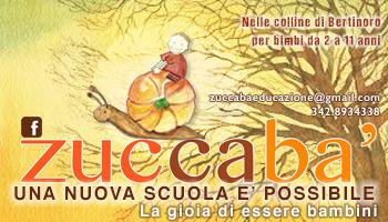 banner zuccaba