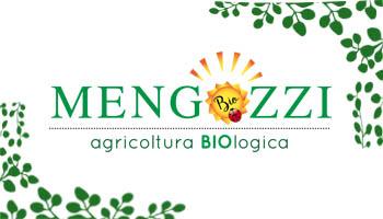 banner mengozzi