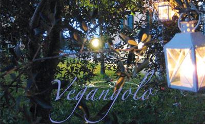 Vegangolo