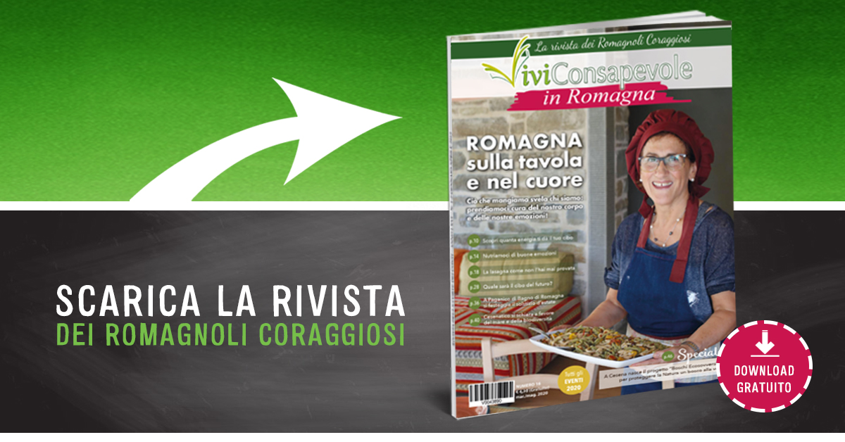Scarica la rivista Vivi Consapevole in Romagna 16