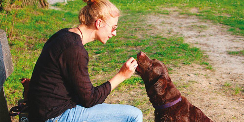Alimentazione naturale e sostenibilità ambientale per cani, gatti e non solo