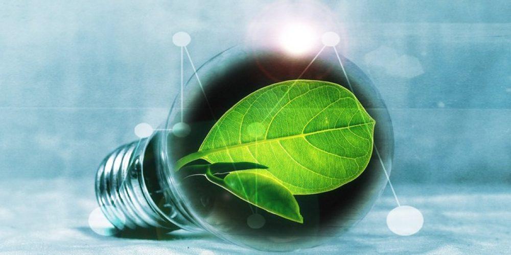 E.CO-ENERGIA CORRENTE: l'azienda cesenate presenta i suoi servizi green