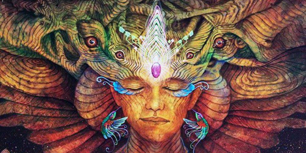 Il Sogno Sciamanico