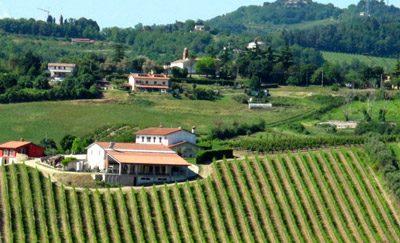 Azienda Agricola Valmorri Vini Biologici