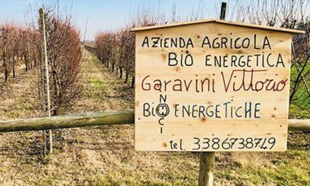 Noceto Bioenergetico di Vittorio Garavini