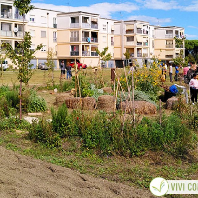 Ortisti di strada: quando la resilienza cresce nell'orto sotto casa!